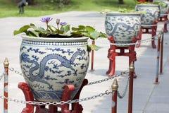 Draak ontworpen potten. Stock Foto's