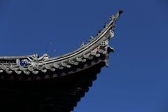 Draak op het dak Royalty-vrije Stock Foto's