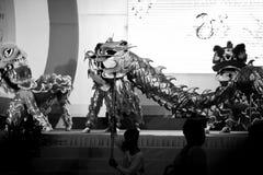 Draakdans in Vietnam voor Tet stock afbeelding