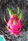 Draakfruit vers van de boom Royalty-vrije Stock Foto