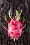 Draakfruit vers van de boom Stock Afbeelding