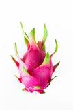 Draakfruit vers van de boom Royalty-vrije Stock Afbeelding