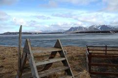 Drabina nad ogrodzeniem w Iceland Obrazy Royalty Free