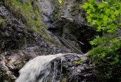 Drabinowa ścieżka w Janosikove diery w Mala Fatra górach w Sistani Obraz Stock