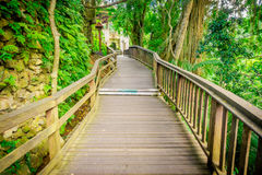 Drachebrücke an heiligem Affen Forest Sanctuary Ubud, an einem Naturreservat und am Komplex des hindischen Tempels in Ubud, Bali, Stockfotografie