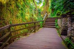 Drachebrücke an heiligem Affen Forest Sanctuary Ubud, an einem Naturreservat und am Komplex des hindischen Tempels in Ubud, Bali, Lizenzfreie Stockfotografie