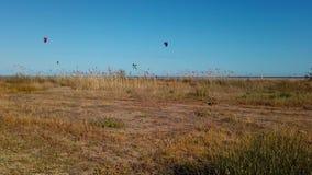 Drachen, der in Spanien mit klaren blauen Himmeln surft stock footage