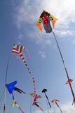 Drachen, die in den Himmel fliegen Stockfoto