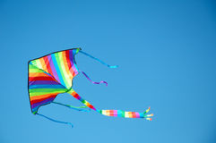 Drachen-Flugwesen, blauer Himmel Stockfotografie