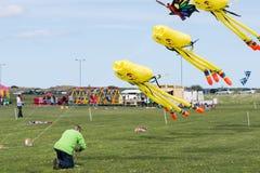 Drachen im Flug an Blyth-Drachen-Festival 2015 lizenzfreies stockfoto