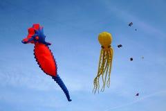 Drachen im Himmel - Freiheit Lizenzfreies Stockbild