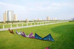Drachen im Park Stockfotos