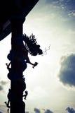 Drachen ordneten die Himmel an Stockfoto