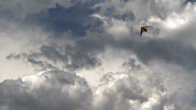 Drachen und der kommende Sturm stock video footage