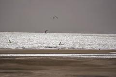 Drachen- und Windsurfen Stockfoto