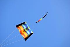 Drachen vieler Farben Lizenzfreie Stockfotografie