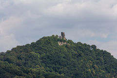 Drachenfels castle ruin koenigswinter germany Royalty Free Stock Photos