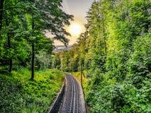 Drachenfels järnväg Tyskland under träd mot cityscape royaltyfri foto