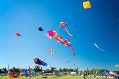 Drachenfestival Stockfotos