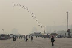 Drachenfliegen am olympischen Park Lizenzfreies Stockfoto