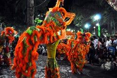 Drachetanz während des neuen Mondjahres Tet in Vietnam Stockfoto