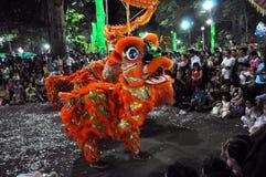 Drachetanz während des neuen Mondjahres Tet in Vietnam Lizenzfreies Stockfoto