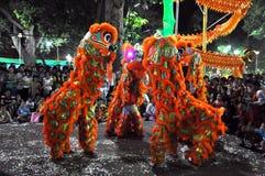 Drachetanz während des neuen Mondjahres Tet in Vietnam Lizenzfreie Stockfotografie