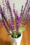 Dracocephalum Wildflowers in un vetro Fotografia Stock Libera da Diritti