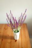 Dracocephalum Wildflowers w szkle Zdjęcia Stock
