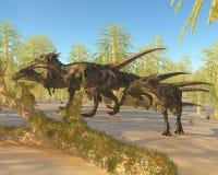 Dracorex Fotografía de archivo