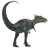 Dracorex Dinosaur on White Stock Photo