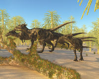 Dracorex. A herd of Dracorex dinosaurs walk through a carboniferous forest in the Cretaceous Era Stock Photography