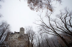 Dracula castle Royalty Free Stock Images