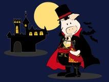 Dracula Pig. Stock Image