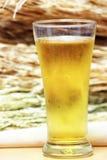 Draf啤酒 免版税库存照片