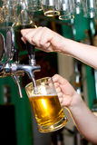 Draft beer. Pour in a glass from the crane Royalty Free Stock Images