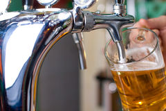 Draft beer Stock Photos