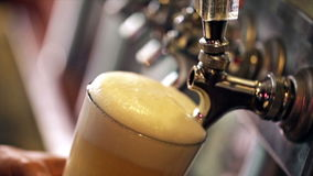Draft beer stock video