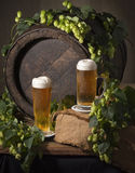 Draft beer with hops Stock Photos