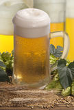 Draft beer with hops Royalty Free Stock Photography