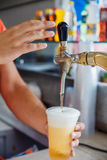 Draft beer pour Stock Photography