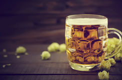 Draft cold beer in glass jar with green ripe hop cones on black Stock Image