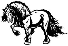 Draft horse Stock Images