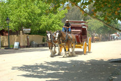 Draft horses and carriage Stock Images