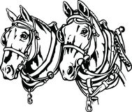 Draft Horses Illustration vector illustration