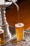 Draft pints Royalty Free Stock Photos
