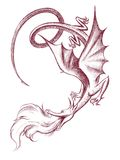 dragão Fotografia de Stock
