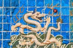 Dragão branco na parede Imagens de Stock