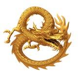 Dragão chinês dourado Fotografia de Stock
