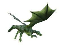 dragão da fantasia da rendição 3D no branco Fotografia de Stock